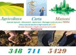 41316 agricarma